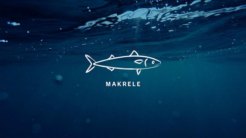 Stromlinienförmig und elegant – aber vor allem lecker: die Makrele